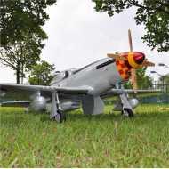 P-51 Mustang 20CC