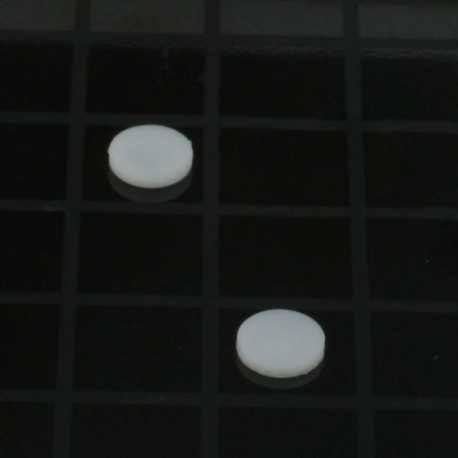 Piston Pin Retainer (2pc)